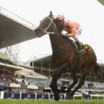 Black Caviar- The Horse Of A Lifetime On DVD From 7 October 2013