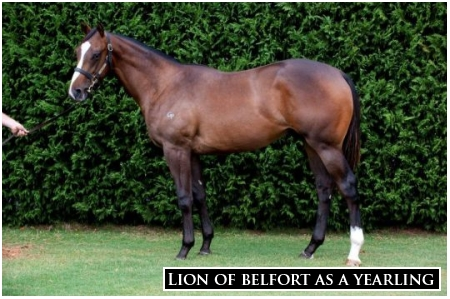 Lion Of Belfort Steps Up In Blue Sapphire