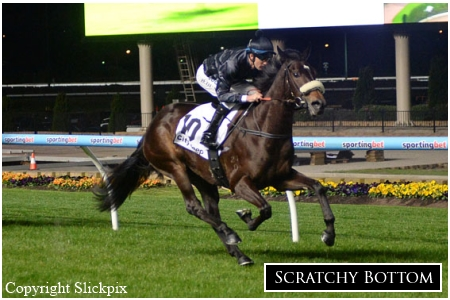 Impressive Debut Win For 3yo Scratchy Bottom
