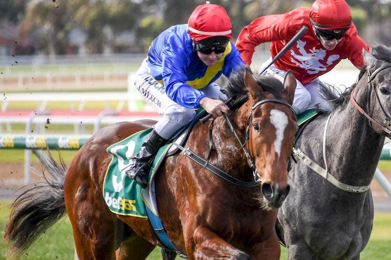 Another Gilgai Bred, Maher Trained Filly Oaks Bound